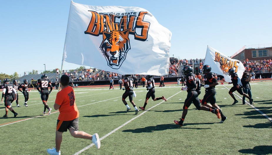 A person running across the football field with a giant Bengals flag